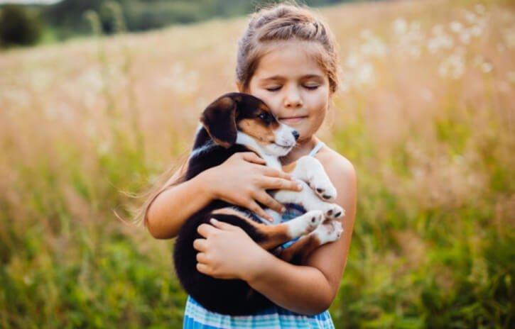 Parenting Pet Dog